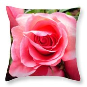 Rose Roses Throw Pillow