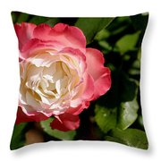 Rose Ruffles Throw Pillow