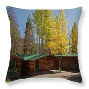 Rose Twin 1 And Twin 2 Cabins At The Holzwarth Historic Site Throw Pillow