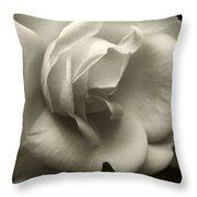 Rose White Throw Pillow