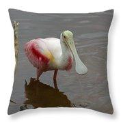 Roseata Spoonbill   #4822 Throw Pillow