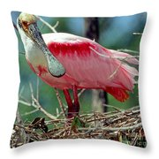 Roseate Spoonbill Adult In Breeding Throw Pillow