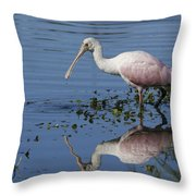Roseate Spoonbill Hunting Throw Pillow