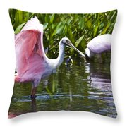 Roseate Spoonbill No.2 Throw Pillow