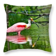 Roseate Spoonbill Wading Throw Pillow
