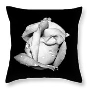 Rosebud In Black And White Throw Pillow