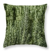Rosemary Forest Throw Pillow