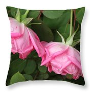 Roses After The Shower Throw Pillow