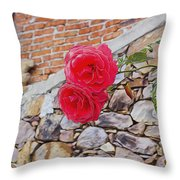 Roses Against The Wall Throw Pillow