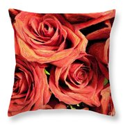 Roses For Your Wall  Throw Pillow