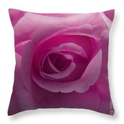 Roses Have Ruffles And Ridges Throw Pillow