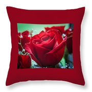 Roses In The Window Throw Pillow