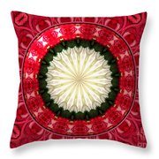 Roses Kaleidoscope Under Glass 19 Throw Pillow