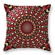 Roses Kaleidoscope Under Glass 21 Throw Pillow