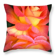 Roses Of Many Colors Throw Pillow