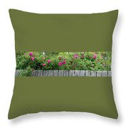 Roses On A Fence Throw Pillow