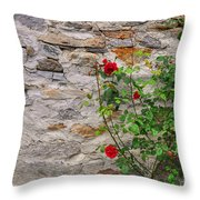 Roses On A Stone Wall Throw Pillow