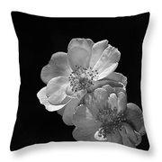 Roses On Black Throw Pillow