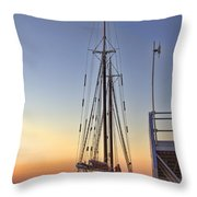 Roseway Throw Pillow