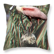 Rosey - 3d Throw Pillow
