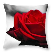 Rosey Red Throw Pillow by Kaye Menner
