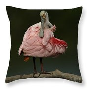 Rosiette Spoonbill Throw Pillow