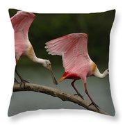 Rosiette Spoonbill Pair Throw Pillow