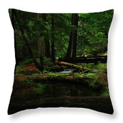 Ross Creek Montana Throw Pillow