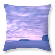 Ross-iceshelf-g.punt-2 Throw Pillow