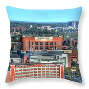 Roswell Park  Throw Pillow
