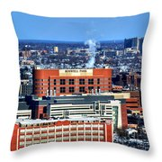 Roswell Park Winter 2013 Throw Pillow