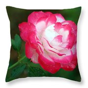 Rosy Reds And Whites Throw Pillow