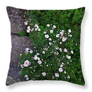 Rosy Rock Throw Pillow