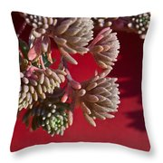 Rosy Sedum 5 Throw Pillow