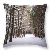 Roth Park Trail 2 Throw Pillow