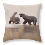 Rough Courtship Of Male And Female Hookers Sealions Throw Pillow