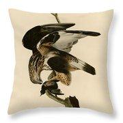 Rough-legged Falcon Throw Pillow
