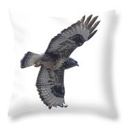 Rough-legged Hawk In Flight-signed-#4318 Throw Pillow