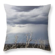 Rough Skys Over Colorado Plateau Throw Pillow