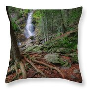 Rough Terrain Throw Pillow