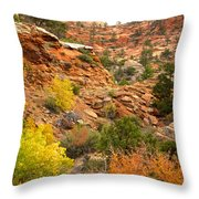 Rough Terrain In Autumn Along Zion-mount Carmel Highway In Zion Np-ut Throw Pillow