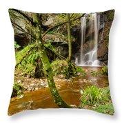 Roughting Linn Waterfall Throw Pillow
