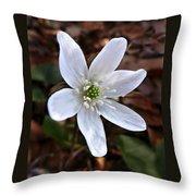 Wild Round-lobe Hepatica Throw Pillow