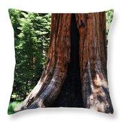 Round Meadow Giant Sequoia Portrait Throw Pillow
