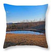 Round Pond Throw Pillow