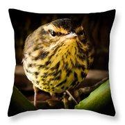 Round Warbler Throw Pillow