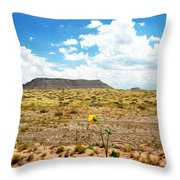 Route 66 Arizona Throw Pillow