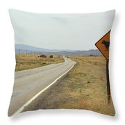 Route 66 - New Mexico Highway Throw Pillow