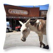 Route 66 - Oatman Arizona Throw Pillow