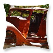 Here's To Old Bones Throw Pillow
